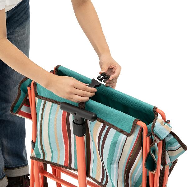 Luggage Cart 06